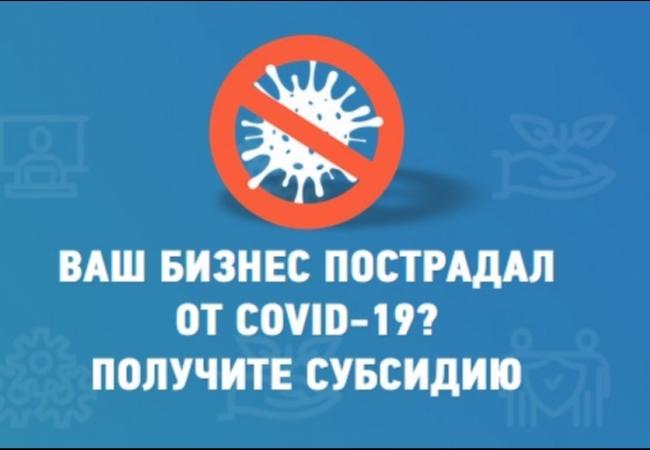 Правительство предоставляет субсидию на проведение мероприятий по профилактике новой коронавирусной инфекции